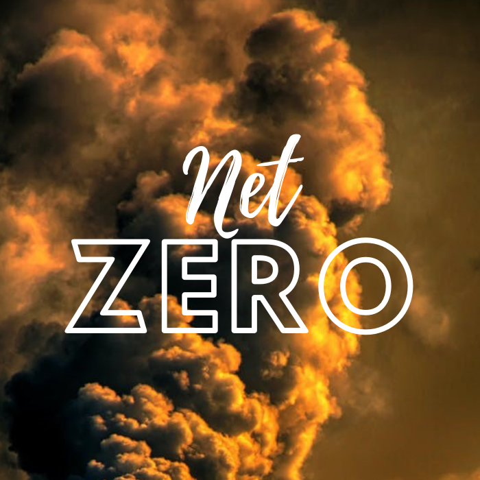 image for Net-zero targets are not achievable without digital solution…
