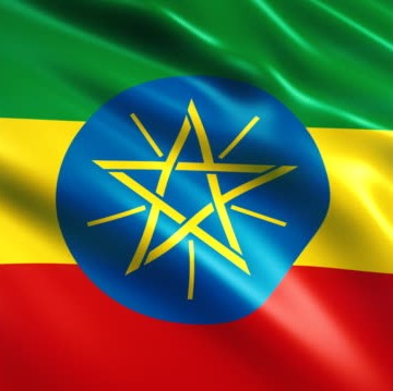 image for Not quite so liberal: Ethiopia suspends foreign infrastructu…